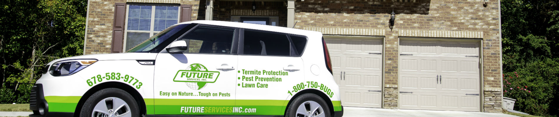 Termite inspection for realtors