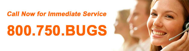 Pest & Animal Control Services Atlanta