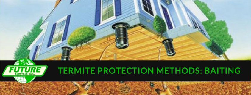 Termite Protection Methods Baiting Future Services